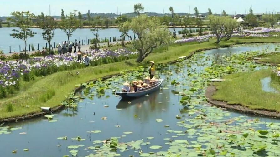 千葉県内の観光客数「本格的な回復にはまだ時間かかる」