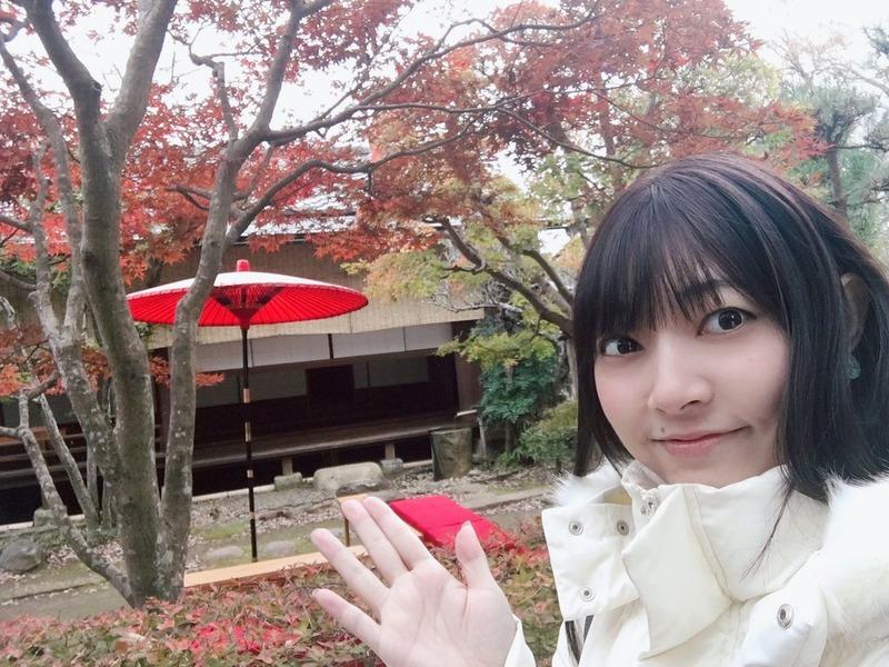長弘翔子のコラム&短歌12「佐倉市:いま楽しめる紅葉」