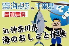 神奈川県で海の仕事体験!