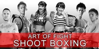 ART OF FIGHT SHOOT BOXING